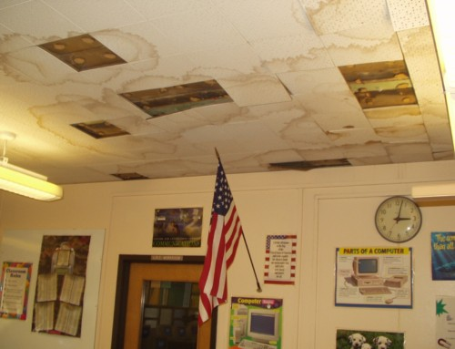 Broward County School Classrooms Plagued by Mold Problems