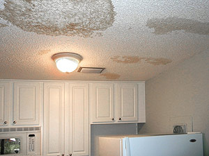 The Mold Lawyers win Injunction Against Condo Association