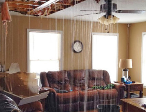 When Is The Condo Association Responsible for Water Damage and Mold?